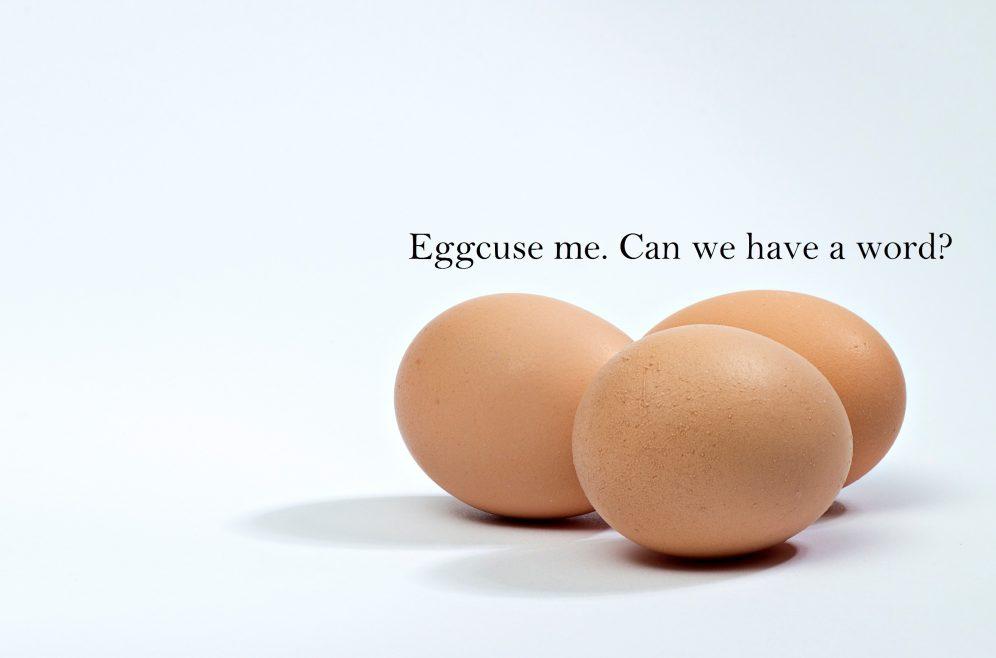egg-sample-503d96ba392ff_hires