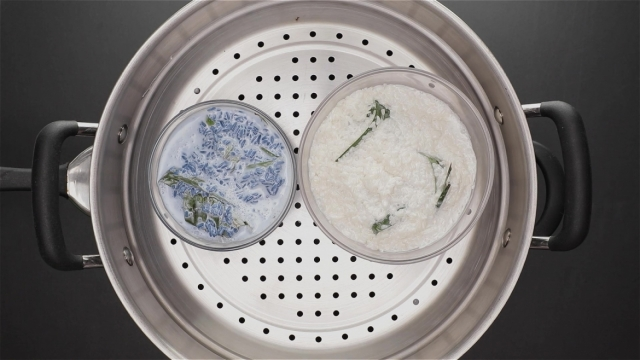 White and blue glutinous rice steaming in a steamer